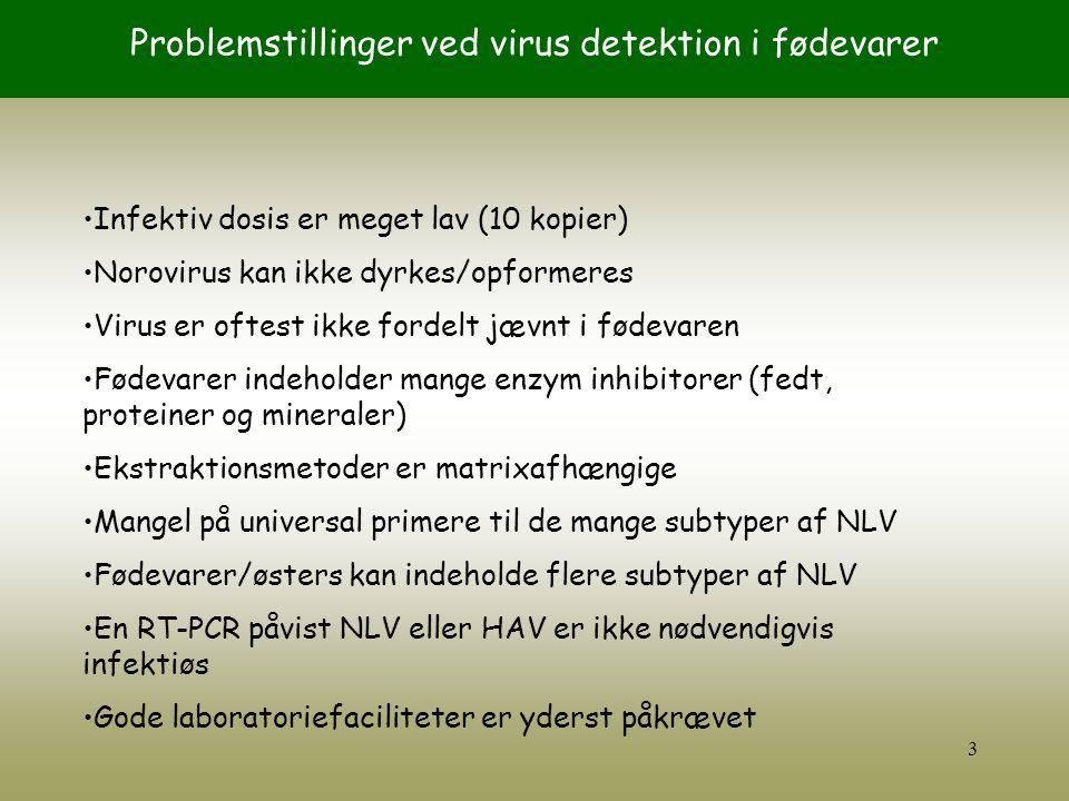 Problemstillinger ved virus detektion i fødevarer