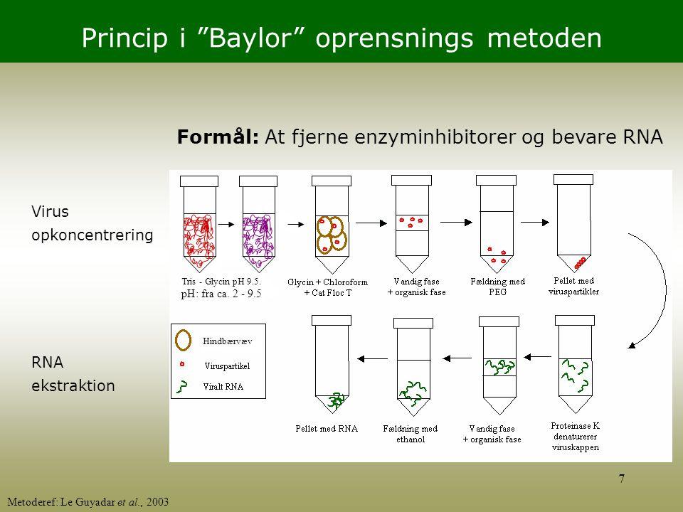 Princip i Baylor oprensnings metoden