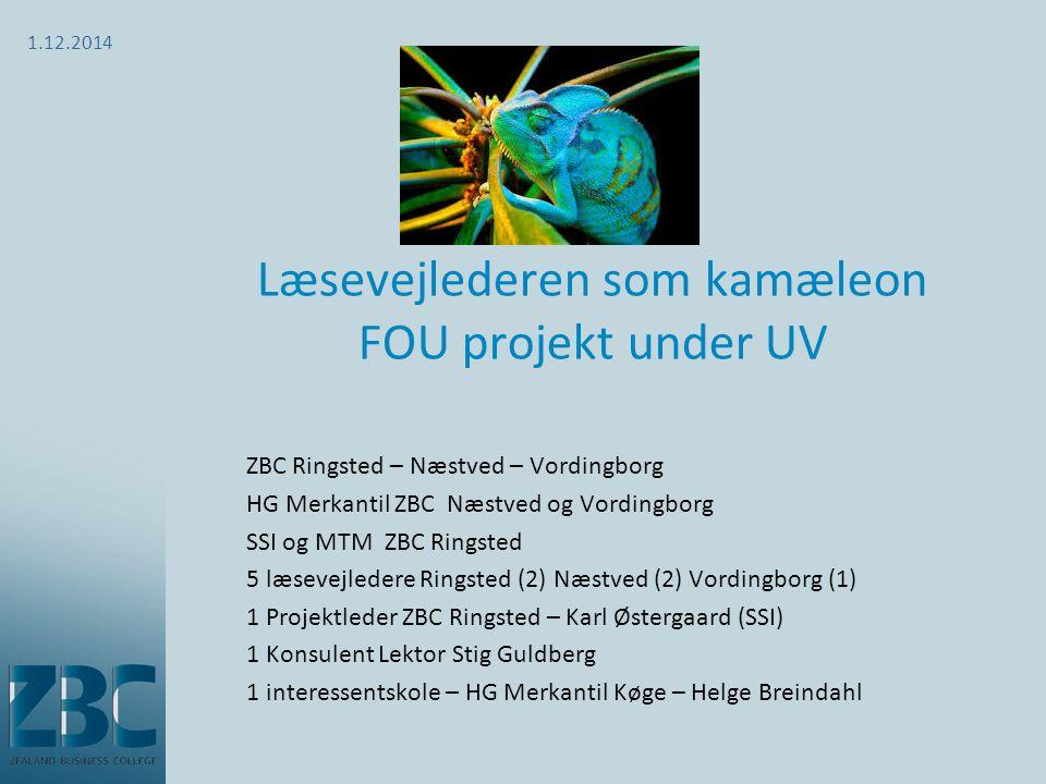 Læsevejlederen som kamæleon FOU projekt under UV