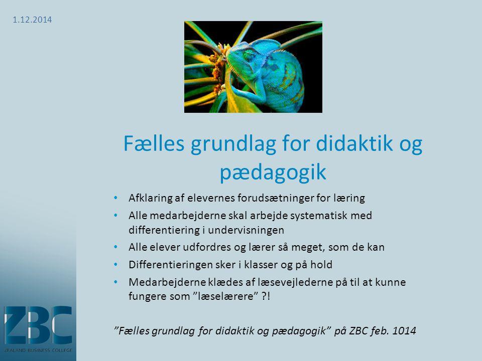 Fælles grundlag for didaktik og pædagogik