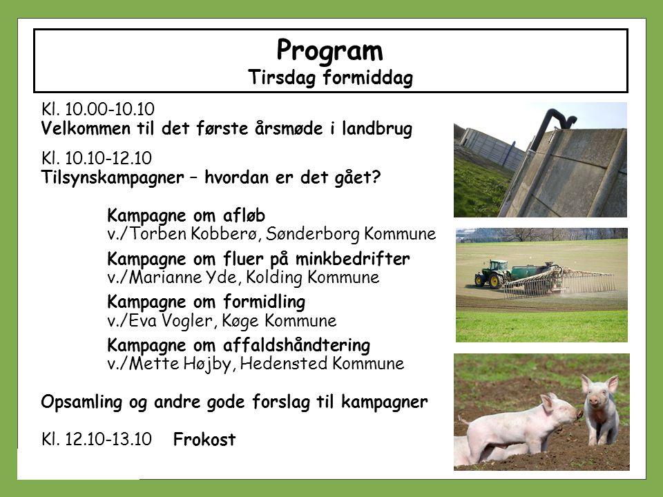 Program Tirsdag formiddag
