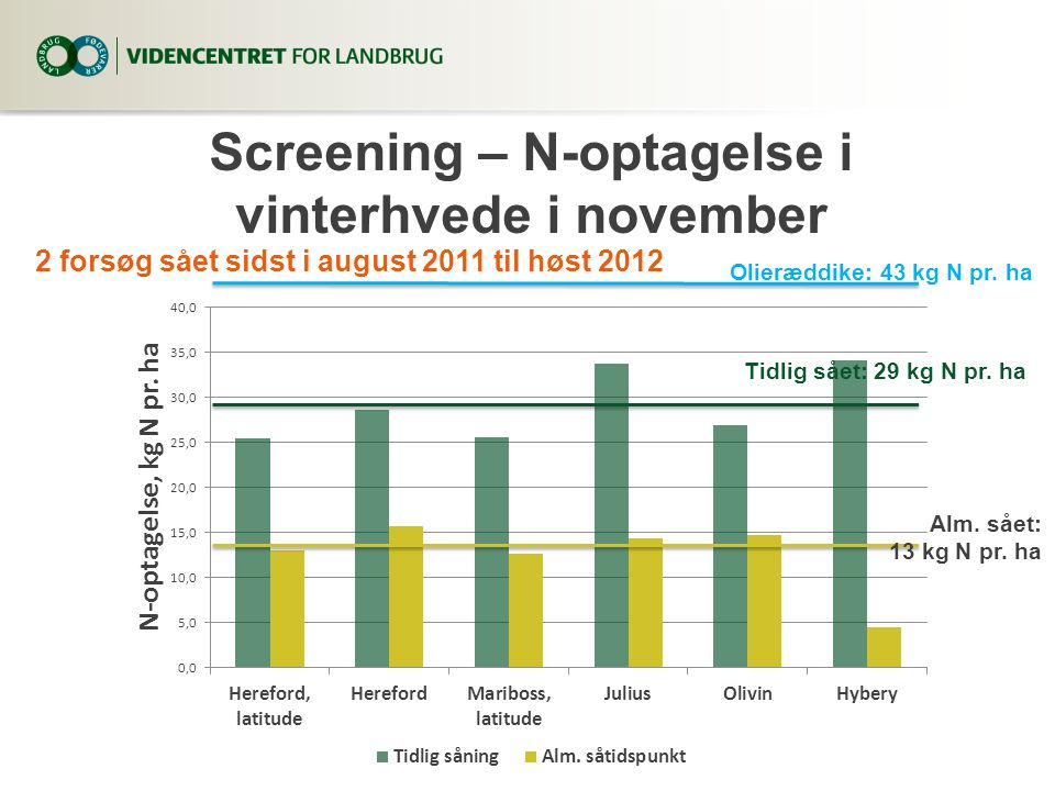 Screening – N-optagelse i vinterhvede i november