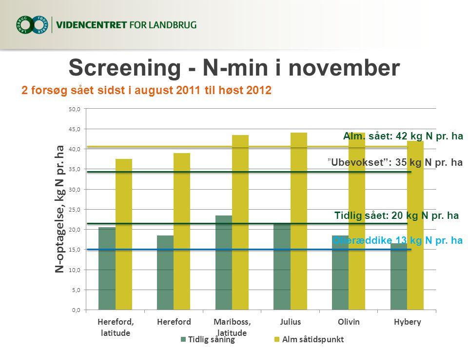 Screening - N-min i november