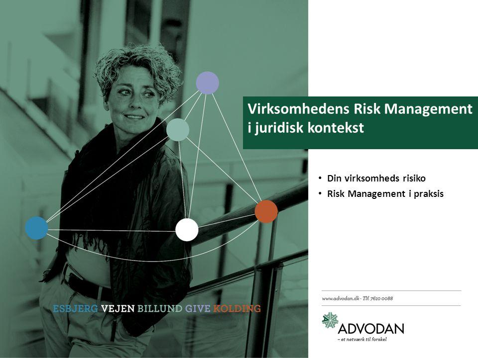 Virksomhedens Risk Management i juridisk kontekst