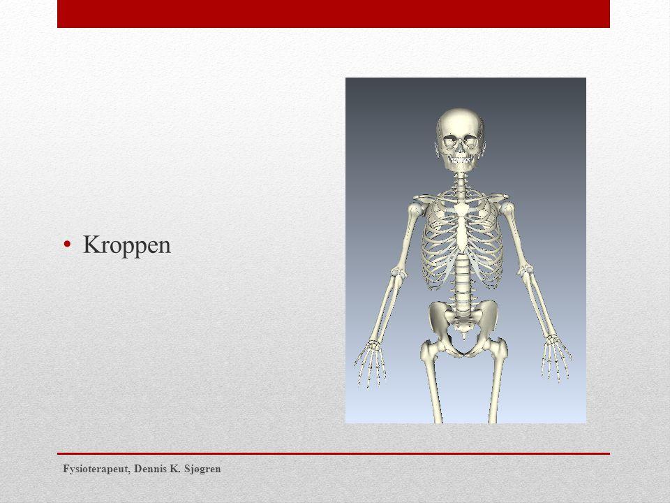 Kroppen Fysioterapeut, Dennis K. Sjøgren