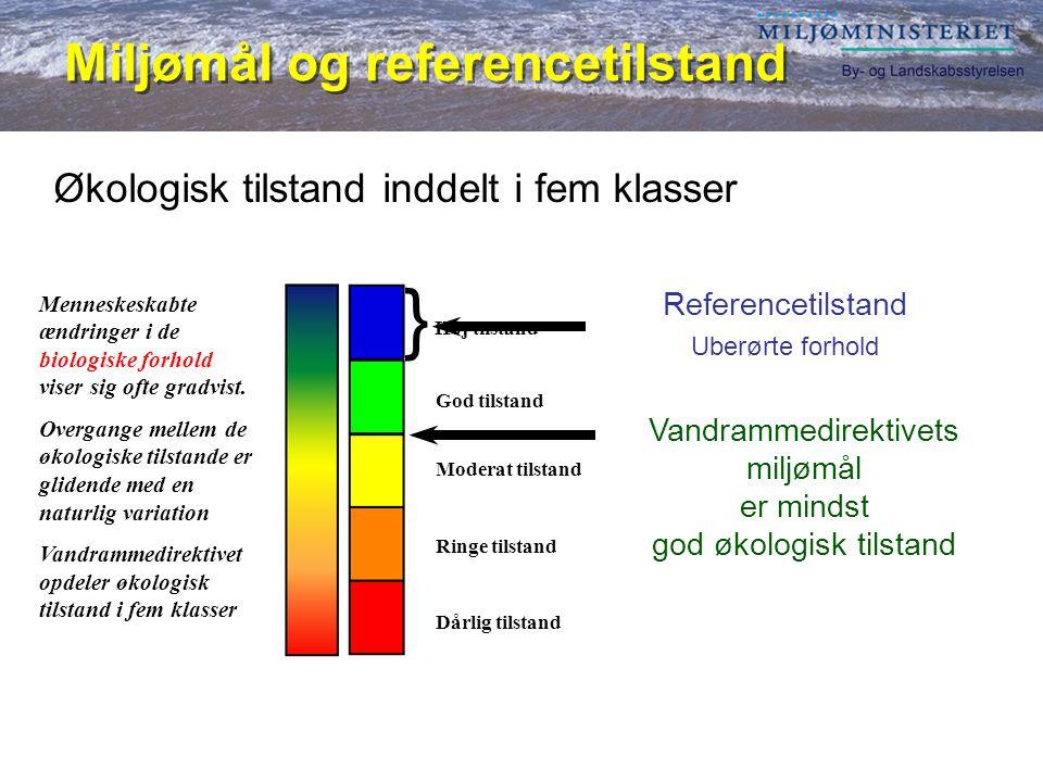 } Miljømål og referencetilstand