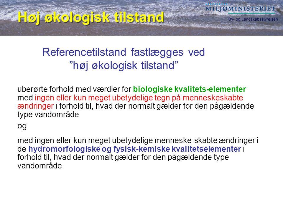 Referencetilstand fastlægges ved høj økologisk tilstand