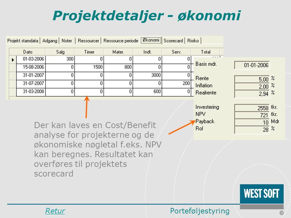 Projektdetaljer - økonomi