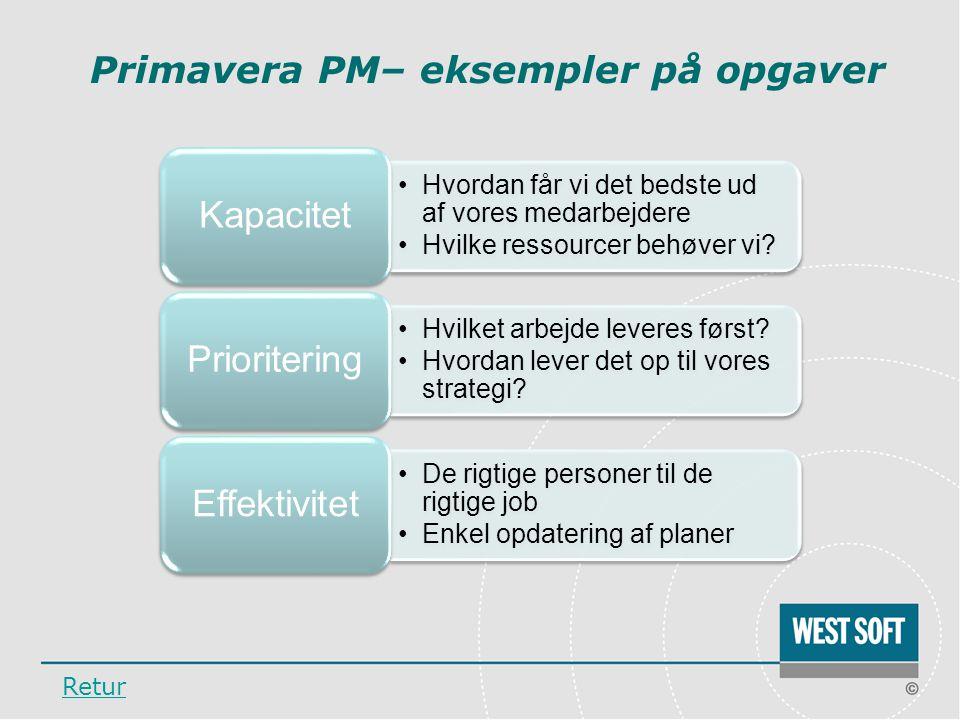 Primavera PM– eksempler på opgaver