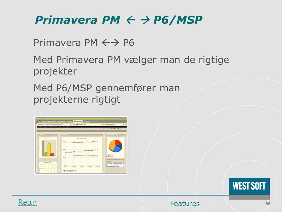 Primavera PM   P6/MSP Primavera PM  P6