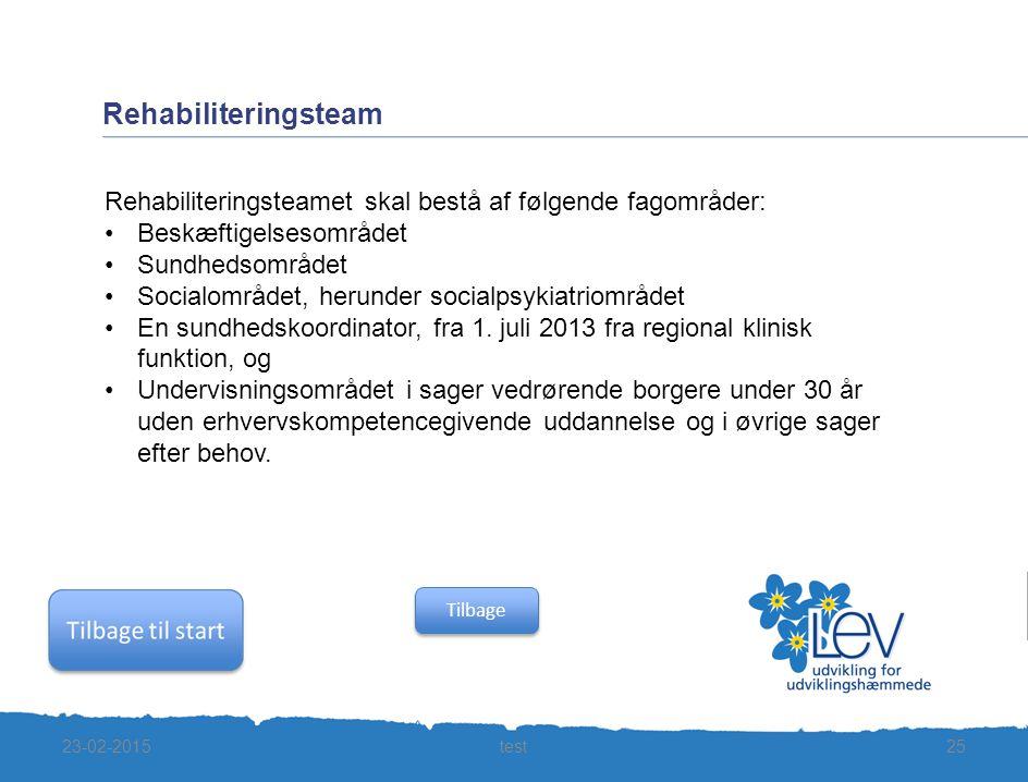 Rehabiliteringsteam Rehabiliteringsteamet skal bestå af følgende fagområder: Beskæftigelsesområdet.