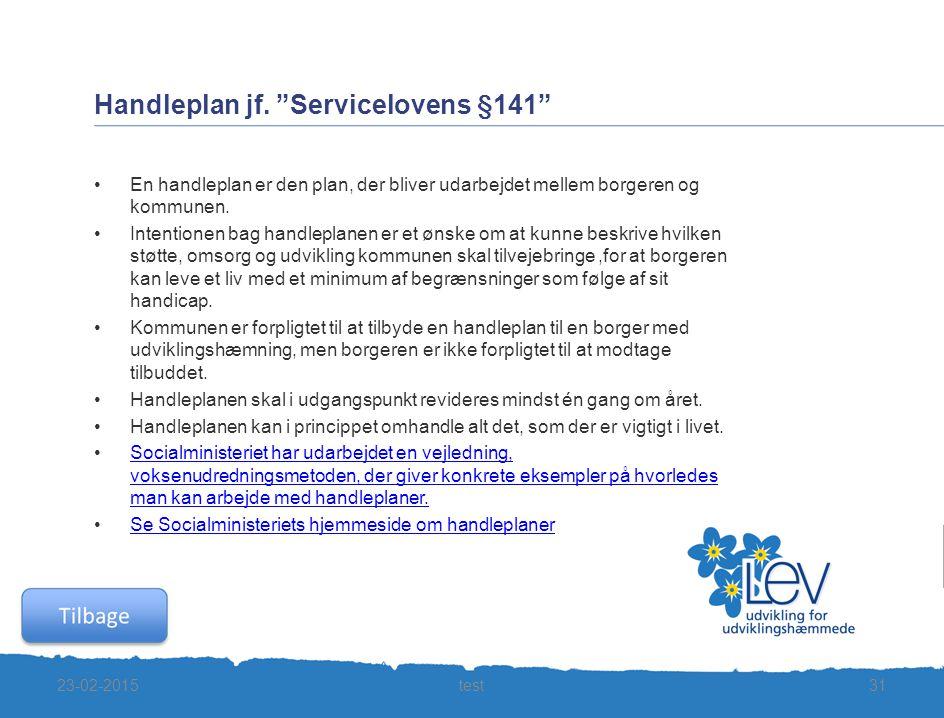 Handleplan jf. Servicelovens §141