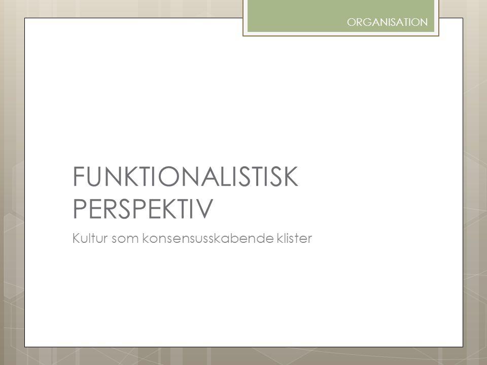 FUNKTIONALISTISK PERSPEKTIV