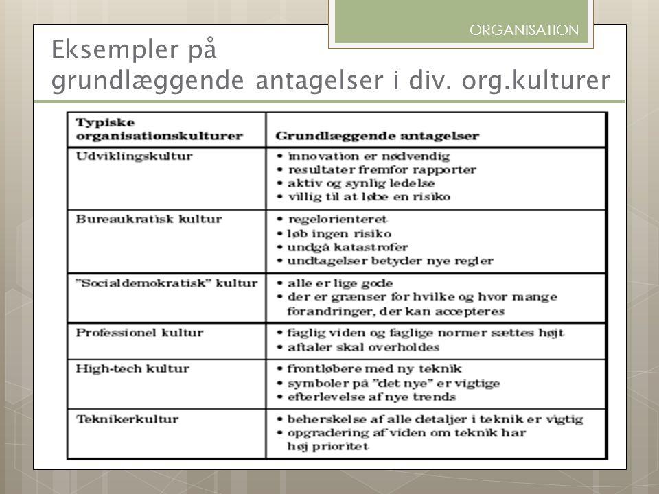 Eksempler på grundlæggende antagelser i div. org.kulturer