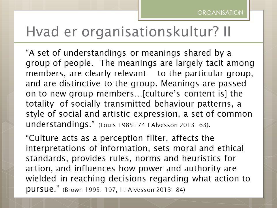 Hvad er organisationskultur II