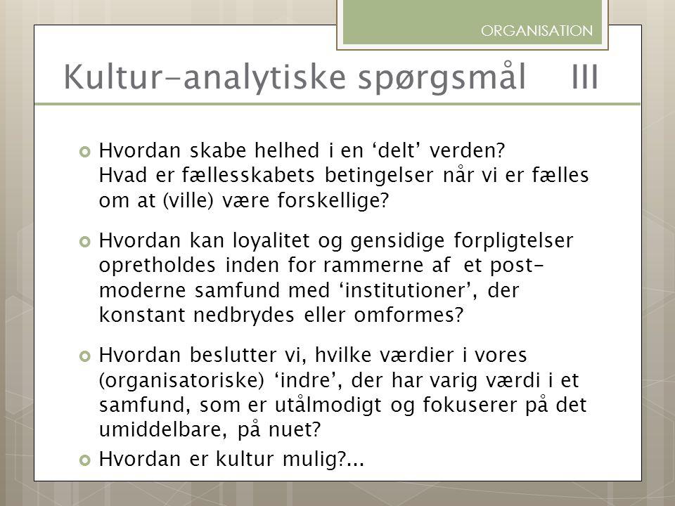 Kultur-analytiske spørgsmål III