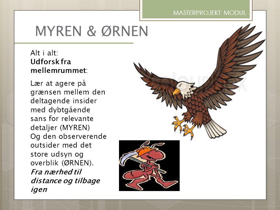 MYREN & ØRNEN Alt i alt: Udforsk fra mellemrummet: