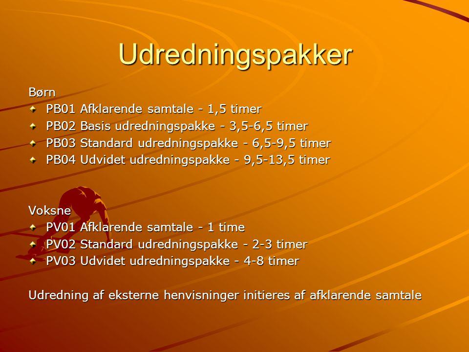 Udredningspakker Børn PB01 Afklarende samtale - 1,5 timer