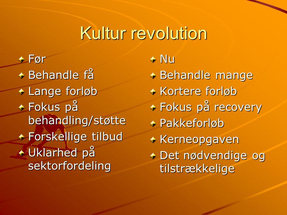 Kultur revolution Før Behandle få Lange forløb