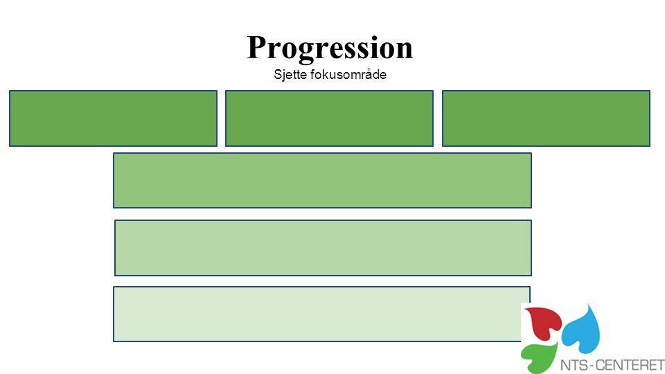 Progression Sjette fokusområde