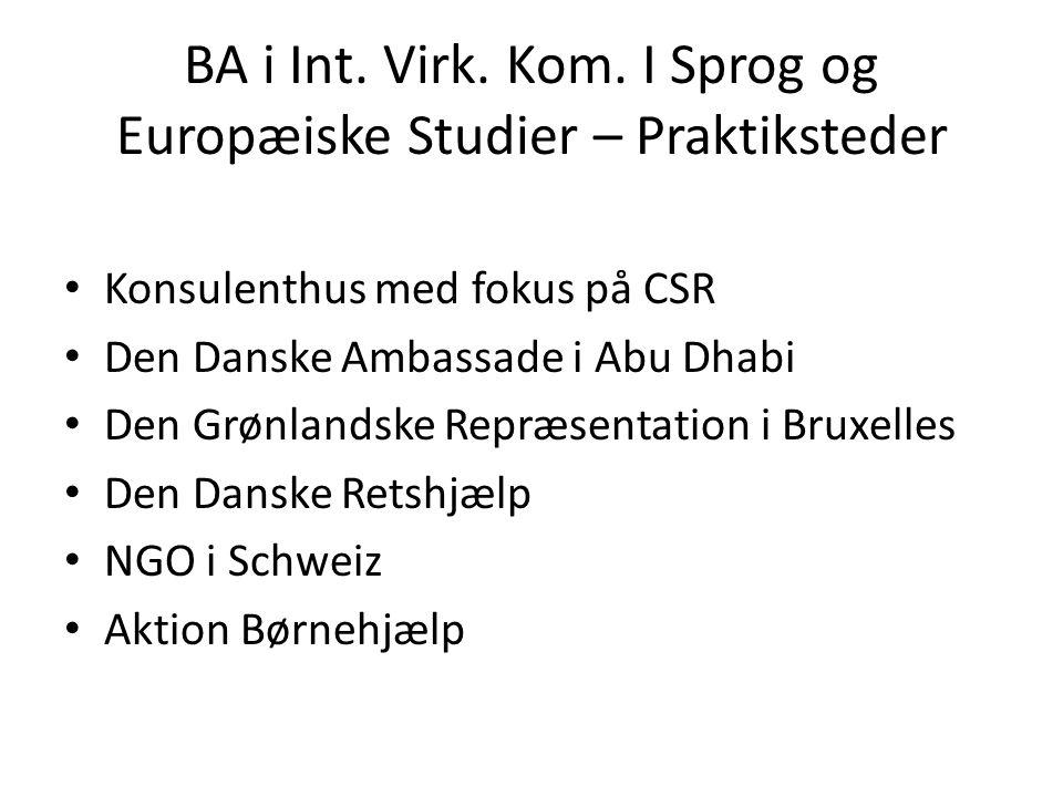 BA i Int. Virk. Kom. I Sprog og Europæiske Studier – Praktiksteder