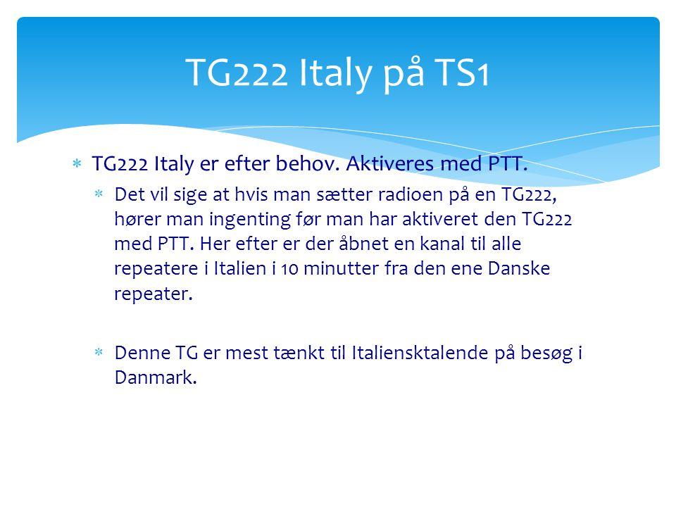 TG222 Italy på TS1 TG222 Italy er efter behov. Aktiveres med PTT.