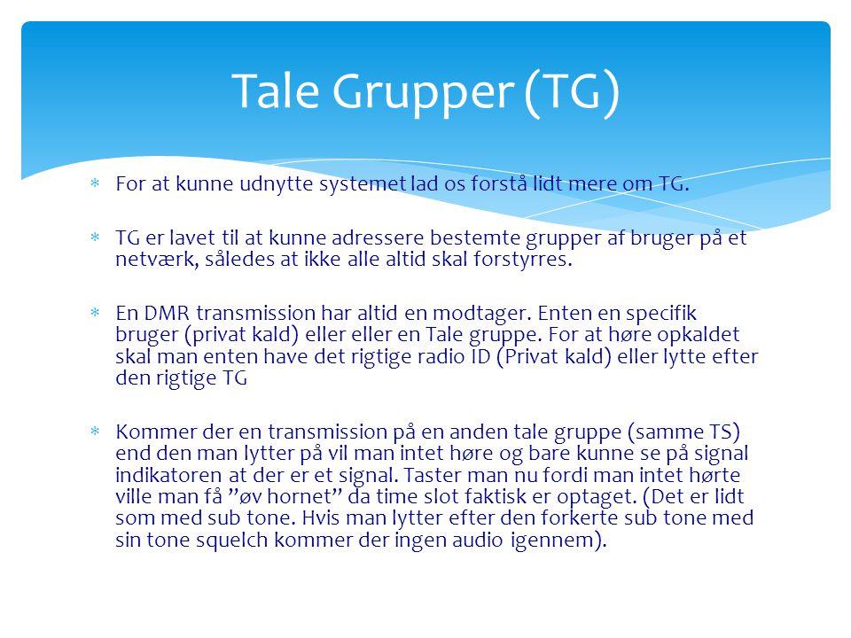 Tale Grupper (TG) For at kunne udnytte systemet lad os forstå lidt mere om TG.