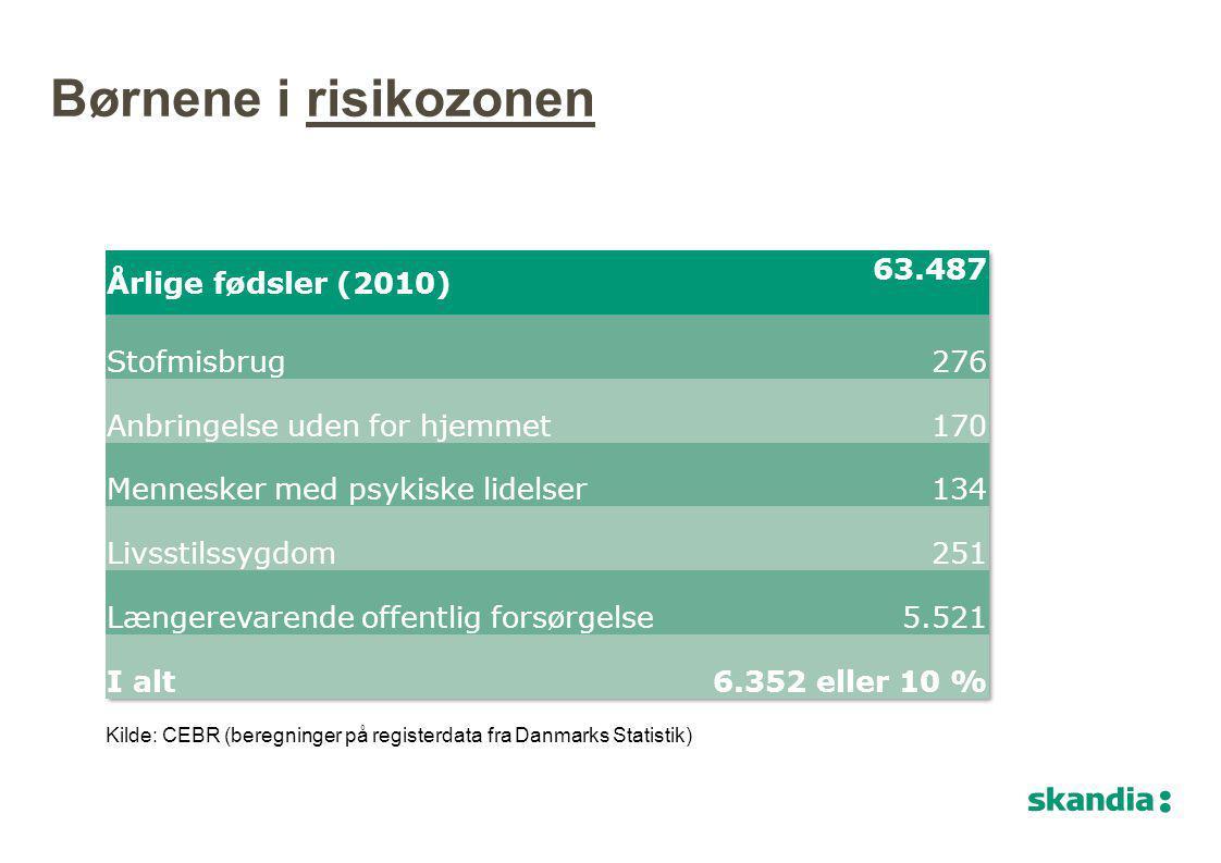 Børnene i risikozonen Årlige fødsler (2010) 63.487 Stofmisbrug 276
