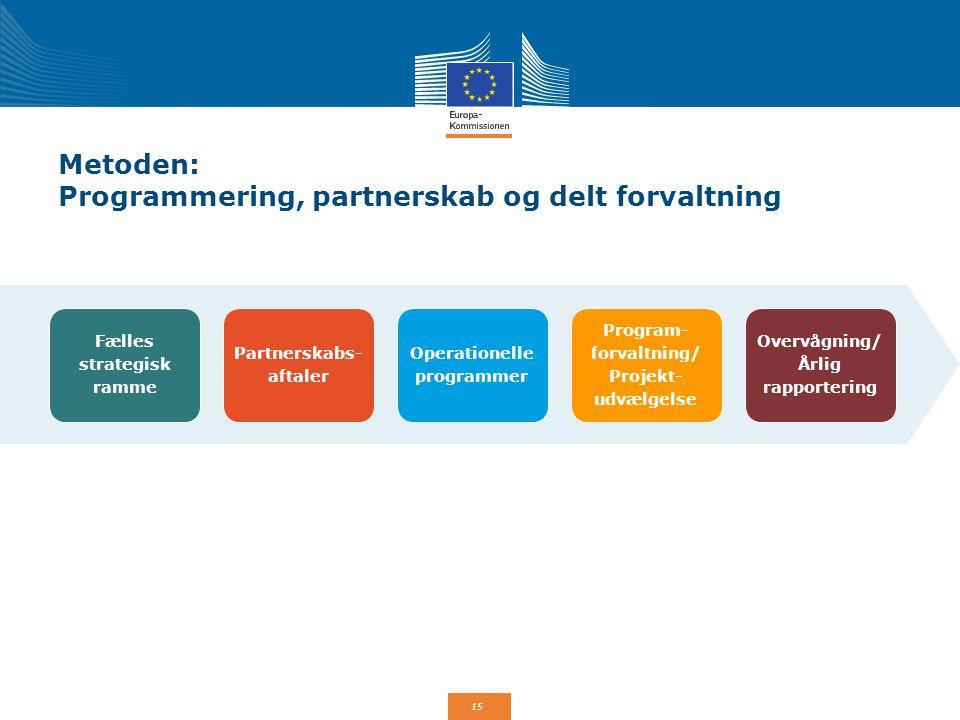 Metoden: Programmering, partnerskab og delt forvaltning