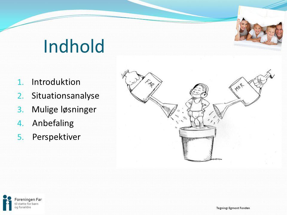 Indhold Introduktion Situationsanalyse Mulige løsninger Anbefaling