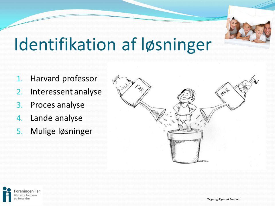 Identifikation af løsninger
