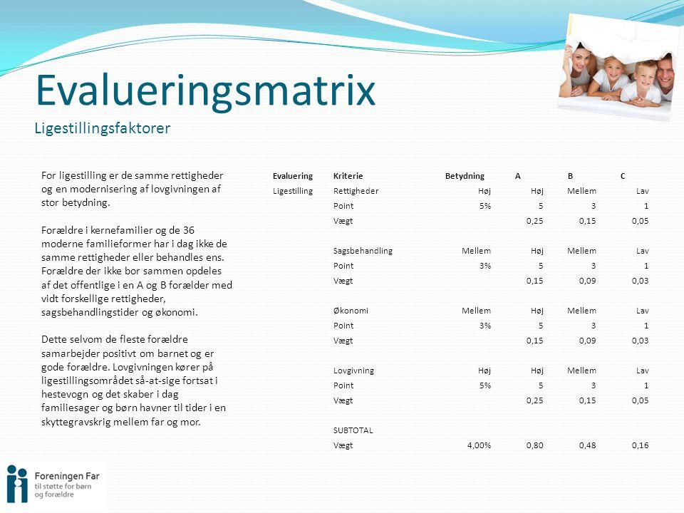 Evalueringsmatrix Ligestillingsfaktorer