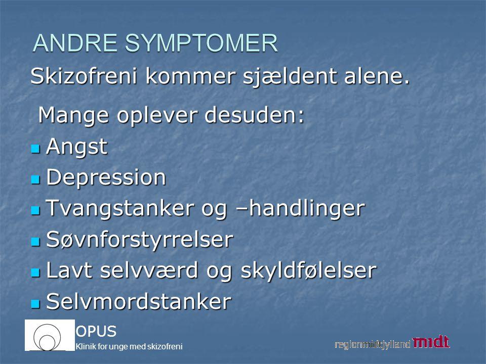 ANDRE SYMPTOMER Skizofreni kommer sjældent alene.