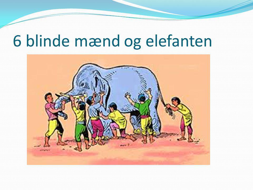 6 blinde mænd og elefanten