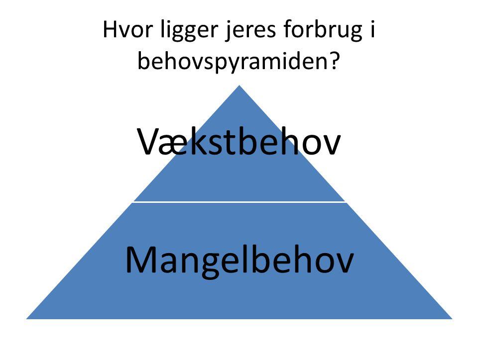 Hvor ligger jeres forbrug i behovspyramiden