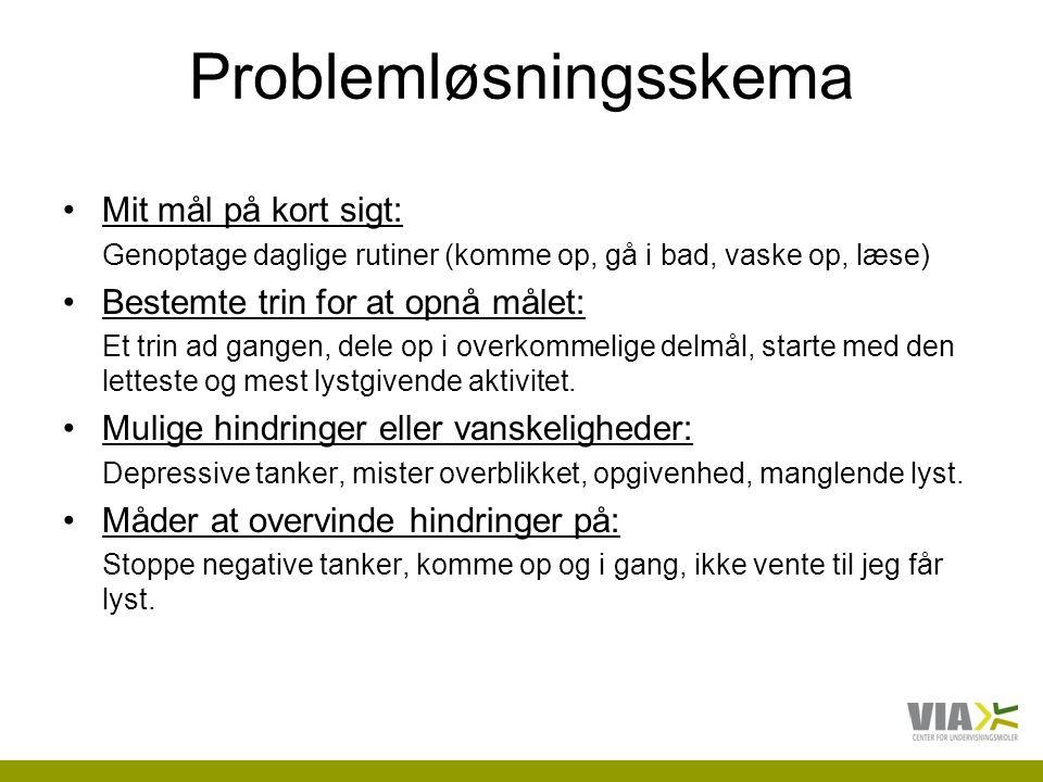 Problemløsningsskema