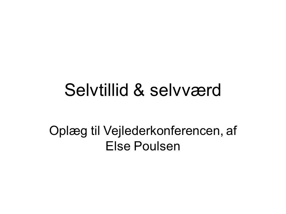 Oplæg til Vejlederkonferencen, af Else Poulsen