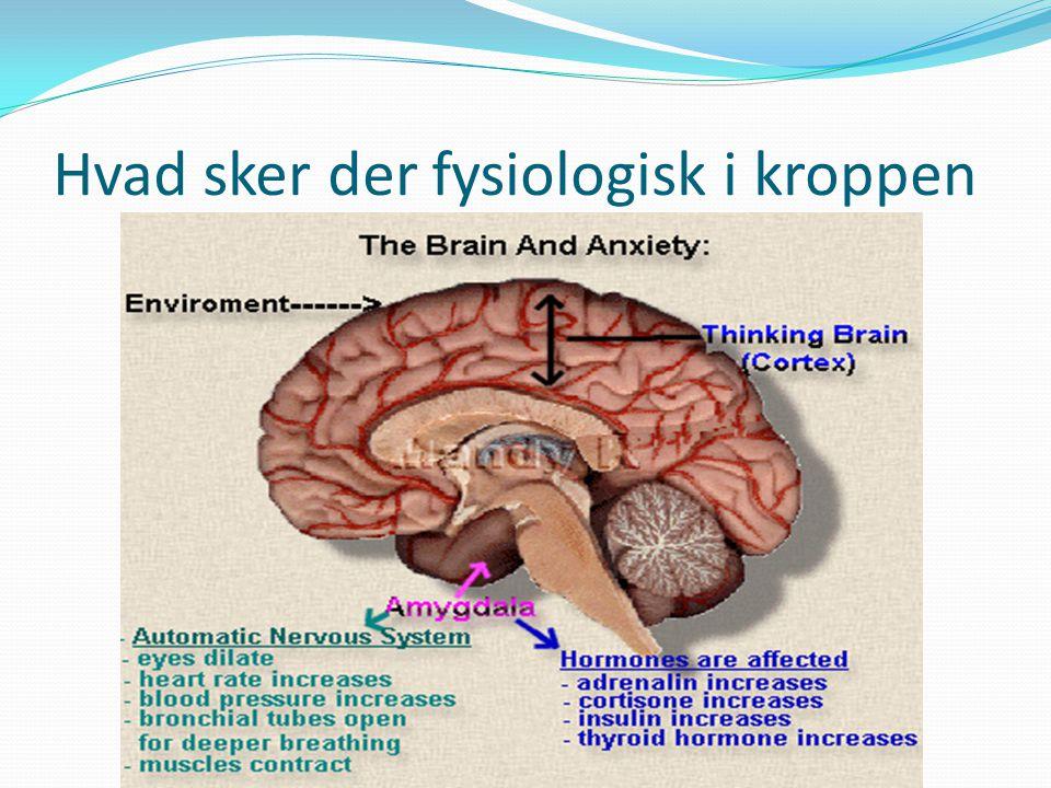Hvad sker der fysiologisk i kroppen