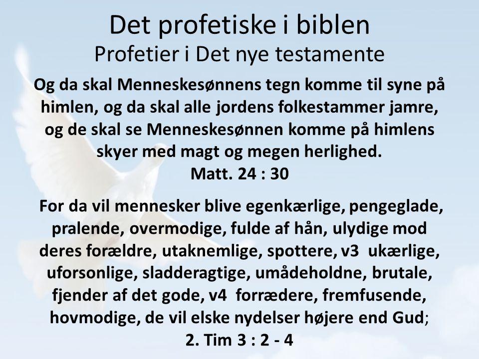 Det profetiske i biblen