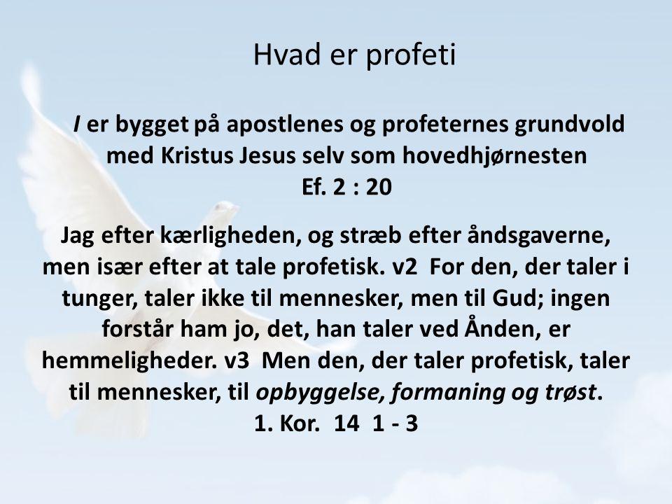 Hvad er profeti I er bygget på apostlenes og profeternes grundvold med Kristus Jesus selv som hovedhjørnesten.