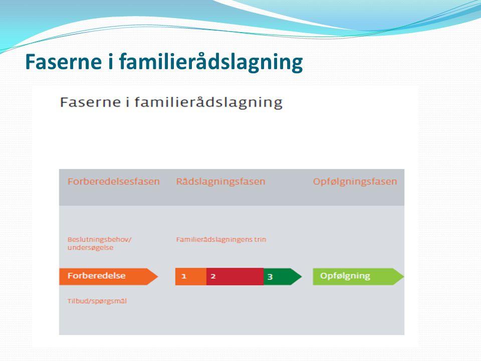 Faserne i familierådslagning