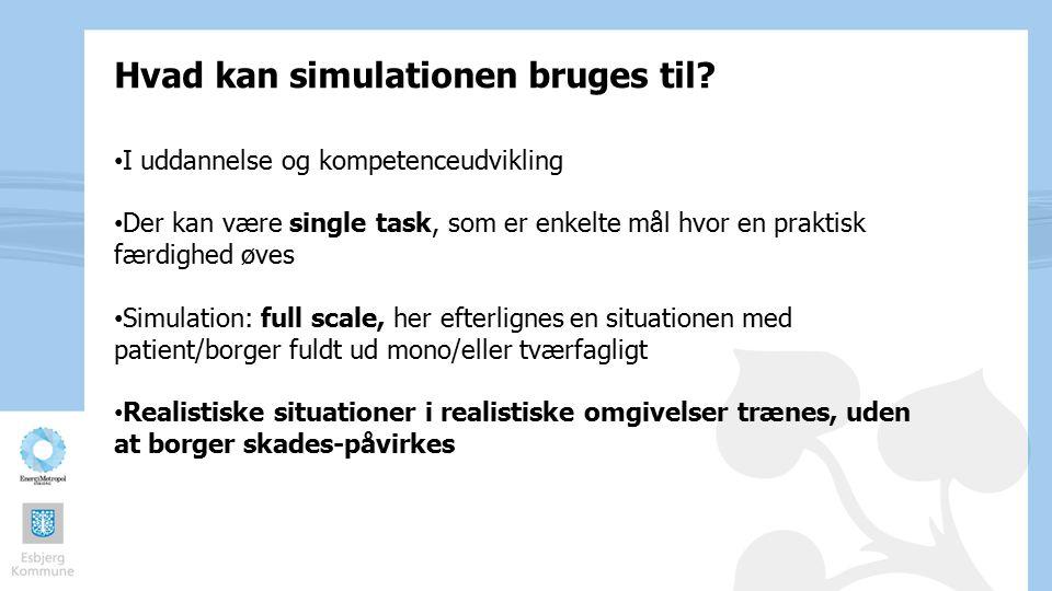 Hvad kan simulationen bruges til
