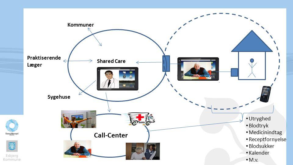 Call-Center Kommuner Praktiserende Læger Shared Care Sygehuse Utryghed