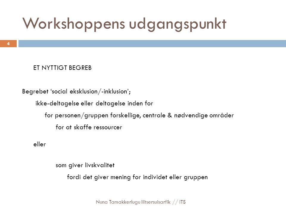Workshoppens udgangspunkt