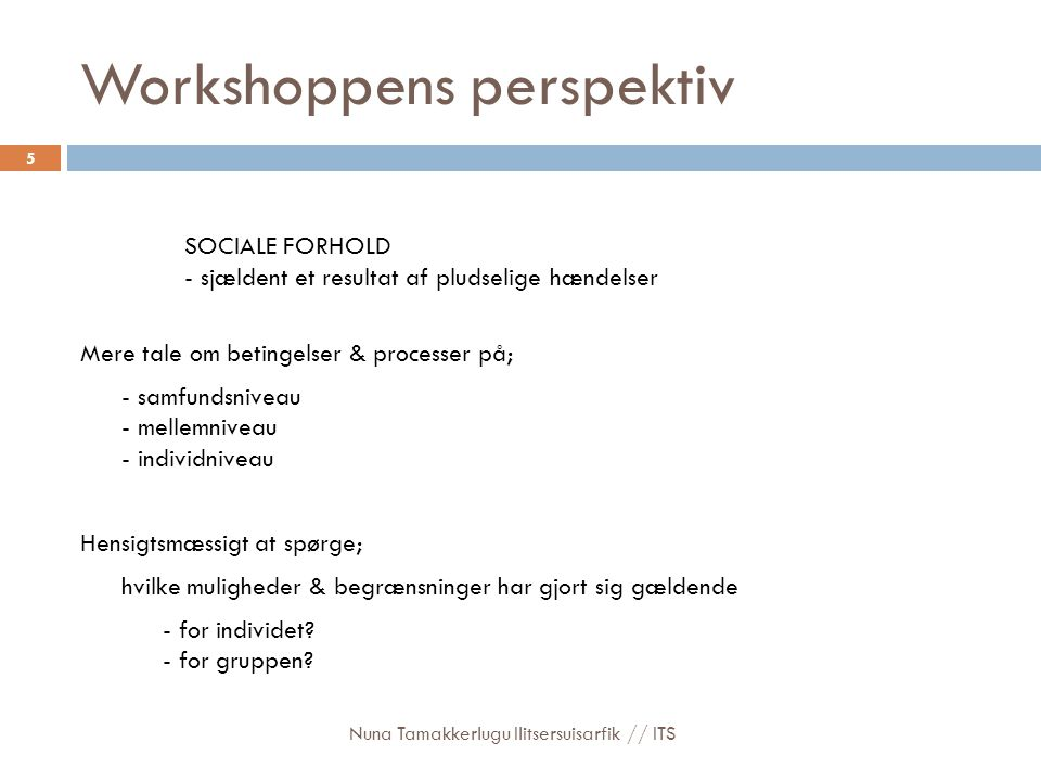 Workshoppens perspektiv