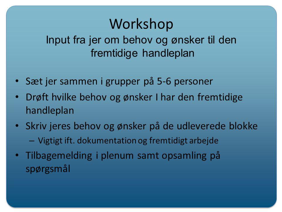 Workshop Input fra jer om behov og ønsker til den