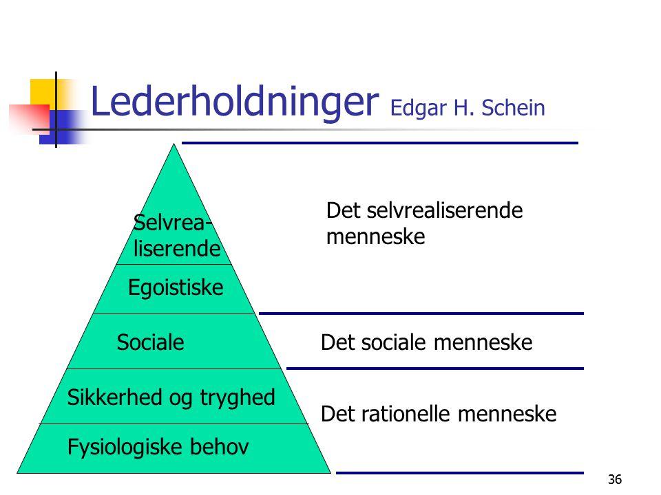 Lederholdninger Edgar H. Schein