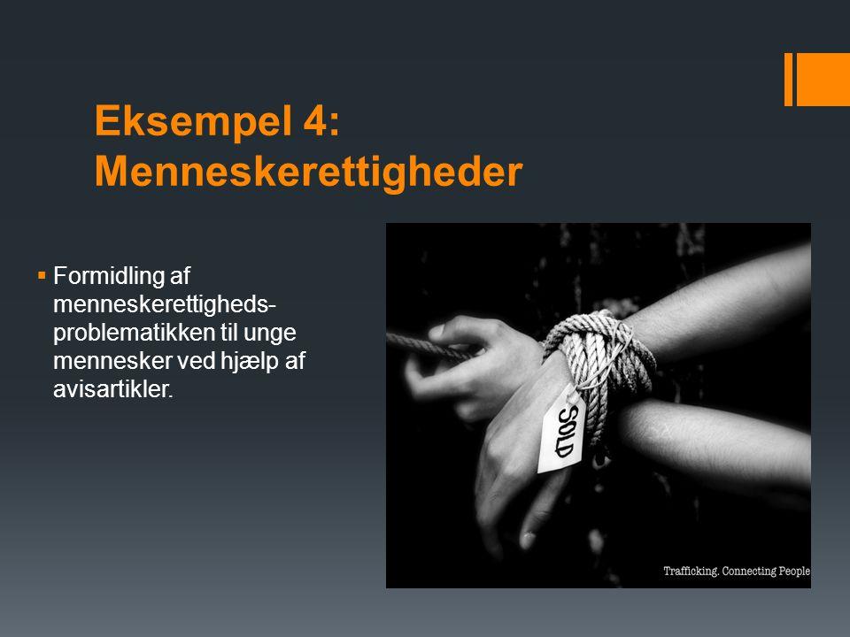Eksempel 4: Menneskerettigheder