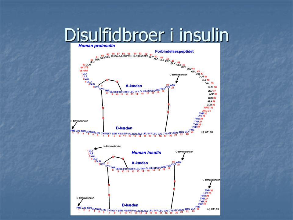 Disulfidbroer i insulin