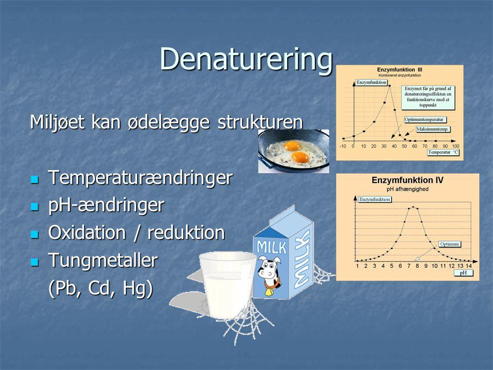 Denaturering Miljøet kan ødelægge strukturen Temperaturændringer